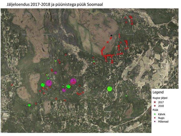 9b9dc80eacb Erinevalt kährikust saab nugise arvukusest ülevaate lumele jäetud jälgede  põhjal. Tundub, et nugise jaoks on 2017-2018 olnud hea aasta ning nende  asurkond ...